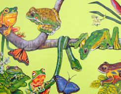 Наука про життя рослини і тварини