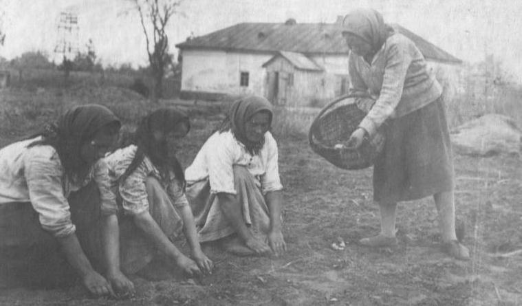 термобелье колективізація сільського господарства голодомор 1932-33 по-настоящему