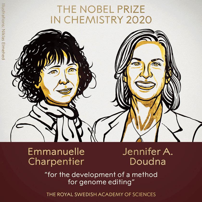 нобелівську премію з хімії